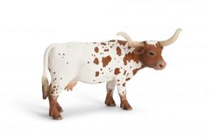 Texas Longhorn Kuh