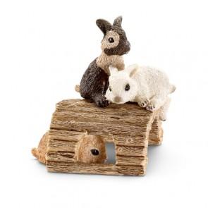 Kaninchenjunge spielend