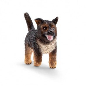 Schäferhund Welpe